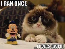 Grumpy Cat Meme I Had Fun Once - my first rundisney fun run grumpy cat grumpy cat meme and cat