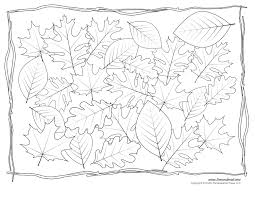 leaves coloring pages fall leaves and acorn coloring page free