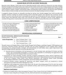 Commercial Real Estate Resume Key Skills Resume Lukex Co