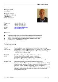 Resume Example Format by Programmer Cv Template Doc