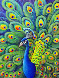 190 best art peacock art images on pinterest peacocks peacock