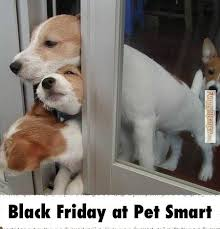 Black Friday Meme - forget shopping enjoy these fun black friday memes instead