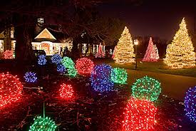Professional Christmas Lights Forrester Holiday Lighting Gallery