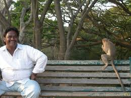 Monkey Bench The World U0027s Best Photos Of Bench And Lalbagh Flickr Hive Mind