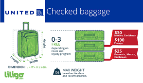 united airlines baggage allowance all you need to know about united airline s baggage liligo com