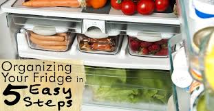 how to make your fridge look like a cabinet organizing your fridge in 5 easy steps lauren greutman