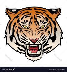 tribal tiger color vs royalty free vector image