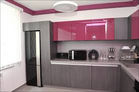 Kitchen Cabinets In Brooklyn by Kitchen Sfgate Houzz Chinese Kitchen Cabinets Brooklyn Design