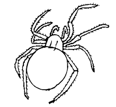 spider coloring pages coloring lab