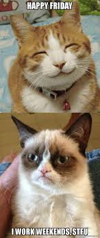 I Work Weekends Meme - happy friday i work weekends stfu grumpy cat vs happy cat