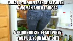 Fridge Meme - difference between a woman and a fridge meme