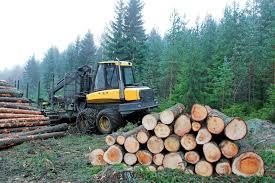 forestry equipment mechanic jobs