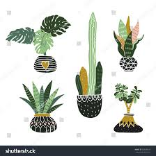Tropical Home Decor Hand Drawn Tropical House Plants Scandinavian Stock Vector