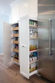 kitchen storage cabinets india gorgeous kitchen pantry cabinet india on this favorite site
