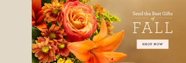 Best Place To Order Flowers Online Send Flowers To Canada Plants And Gift Baskets 1 800 Flowers Com
