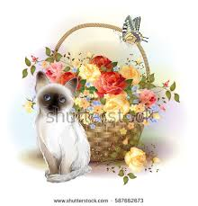 happy birthday card siamese kitten butterfly stock vector