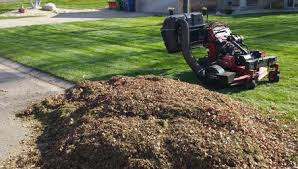 Fall Cleanup Landscaping by Leaf Cleanup And Fall Lawn Service