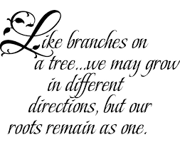 great family quote for photo wall display imagine tree branches