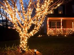christmas decorations light show great use of outdoor lights and tree wrapping christmas