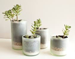 succulent planters diningroom layered sand succulent planter youtube glass planters
