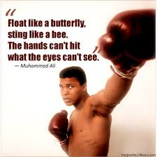 float like a butterfly sting like a bee the can t hit what