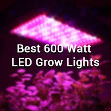 best led grow lights high times 2017 10 best 600 watt led grow lights of 2018 grow weed indoor