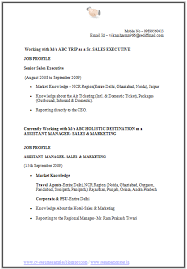 Sales And Marketing Resume Over 10000 Cv And Resume Samples With Free Download Cv Format For