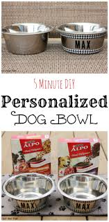 personalized bowl easy diy personalized dog bowls
