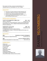 Federal Resume Format Template Great Ideas For Federal Resume Format 2017 Resume 2016