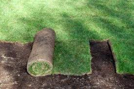 Average Cost Of Landscaping A Backyard 2017 Sod Installation Cost Average Costs To Lay Grass U0026 Lawn Sod
