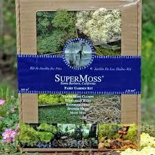 decorative preserved moss fairy garden mosses