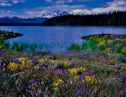 Oregon lakes images Oregon waterfalls lakes and streams pacific crest stock jpg