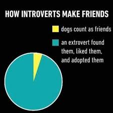 Daria Meme - as the extrovert yasssss that s how i have my best friend
