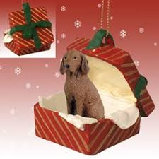 raining cats and dogs vizsla ornament