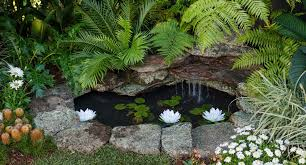 build a stunning and serene backyard pond better homes and gardens