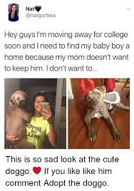 Moving Away Meme - nat hey guys i m moving away for college soon and ineed to find my
