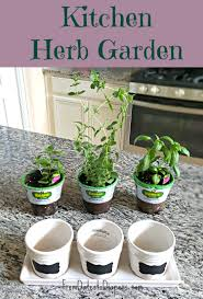 Window Sill Herb Garden by Garden Design Garden Design With Grow Your Own Windowsill Herb