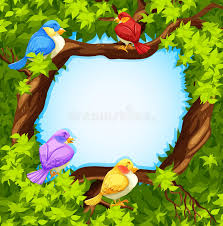 border design with birds on tree stock vector illustration of