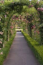 free garden plans design ideas tips for growing a stunning organic