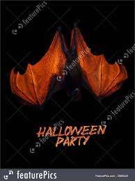halloween party invitation real bat illustration