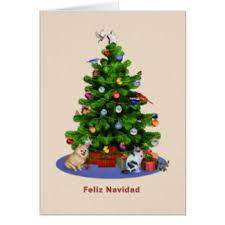 spanish cat greeting cards zazzle com au