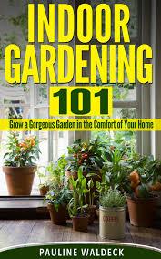 back garden designs design idea idolza