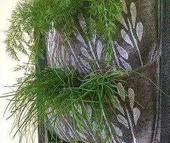 container gardening ideas grow vegetables herbs u0026 fruits