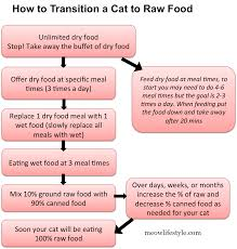 transitioning cats to raw food meow lifestyle