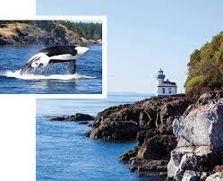 Top 25 Best San Juan by Whale Watching Seattle San Juan Islands Victoria Vancouver