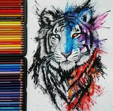 best 20 tiger drawing ideas on tiger sketch tiger