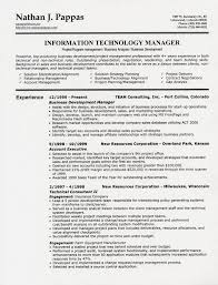 What Is A Scannable Resume Performance Resume Template Examples Of One Page Resumes