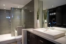 Best Bathroom Design Ideas Decor Pictures Of Stylish Modern - Bathroom interior designer