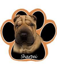 13 best shar pei images on shar pei figurine and