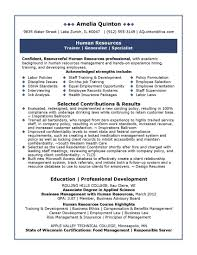 professional summary example for resume hr resume sample pdf sap hr resume sample resume cv cover letter it professional resumes example of professional summary for